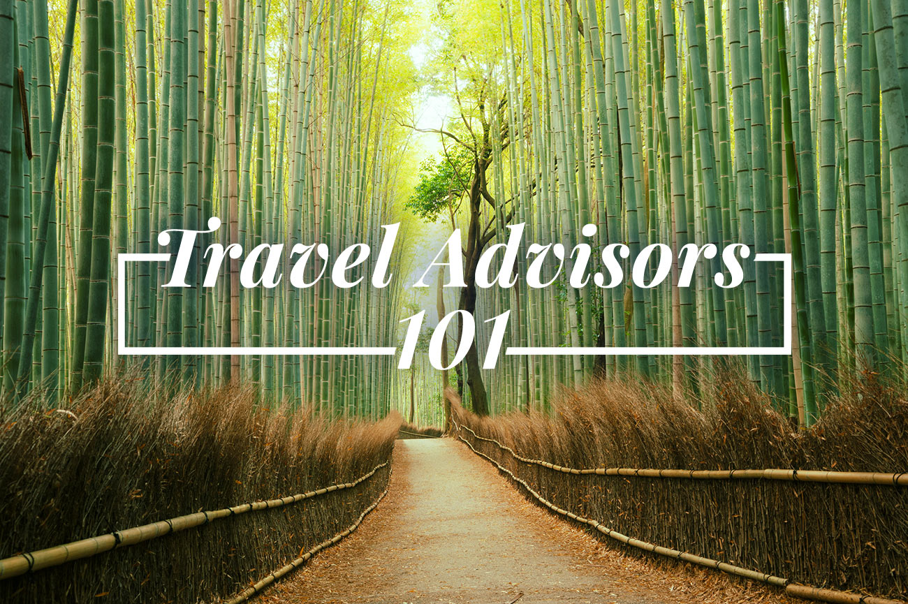 Travel Advisors 101