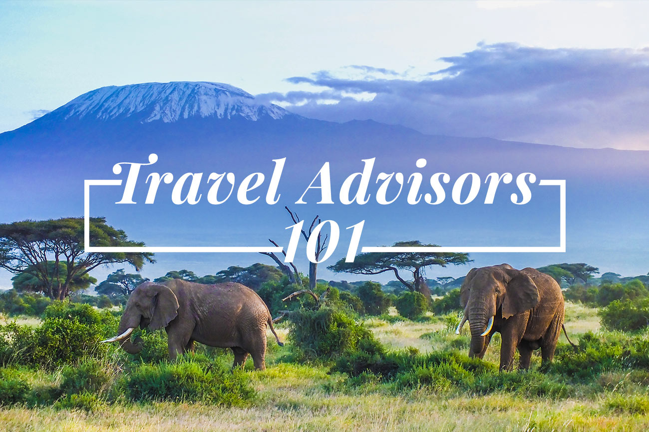 Travel Advisors 101